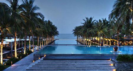 ویتنام