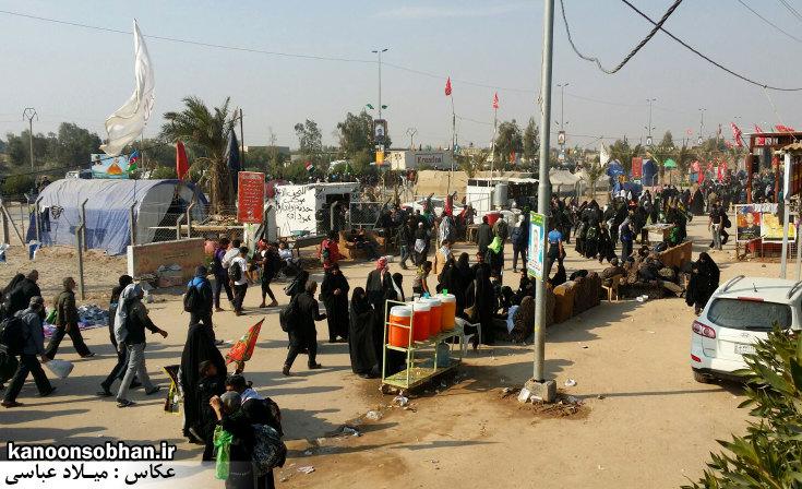 تصاویر اختصاصی کانون سبحان از پیاده روی اربعین حسینی 94 (4)