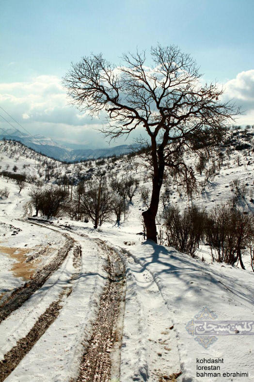 تصاویر برف پاییزی کوهدشت لرستان آذر 94 (6)