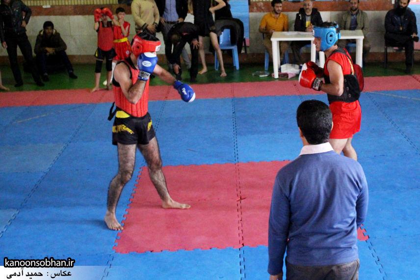 تصاویر مسابقات «جام بصیرت» ووشو در کوهدشت (11)