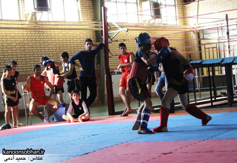 تصاویر مسابقات «جام بصیرت» ووشو در کوهدشت (27)