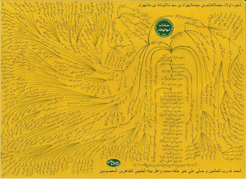 شجره نامه سادات ابوالوفاء کوهدشت + عکس (1)