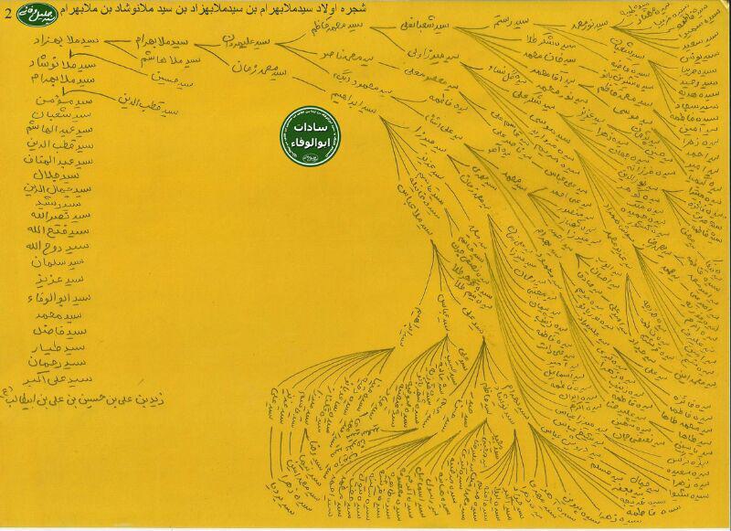 شجره نامه سادات ابوالوفاء کوهدشت + عکس (2)