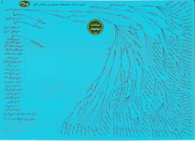 شجره نامه سادات ابوالوفاء کوهدشت + عکس (3)