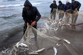 صید ماهی در کوهدشت