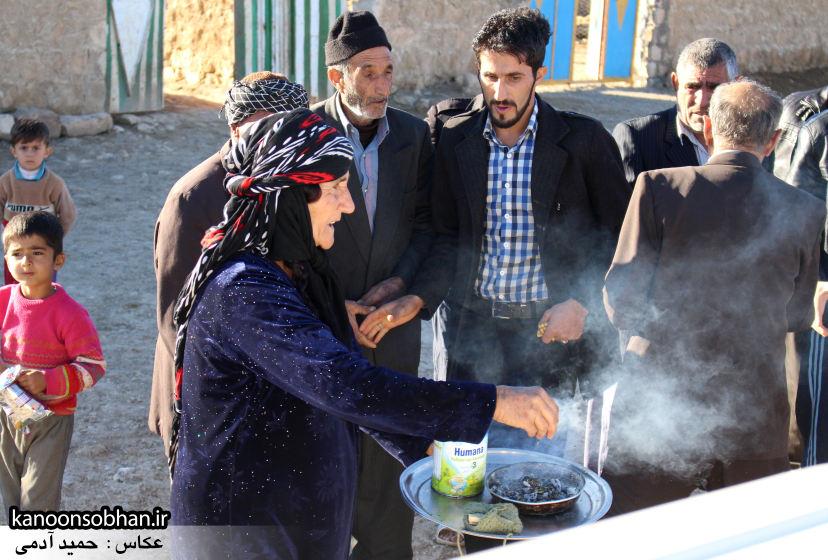 تصاویر دیدار علی امامی راد با مردم   (43)