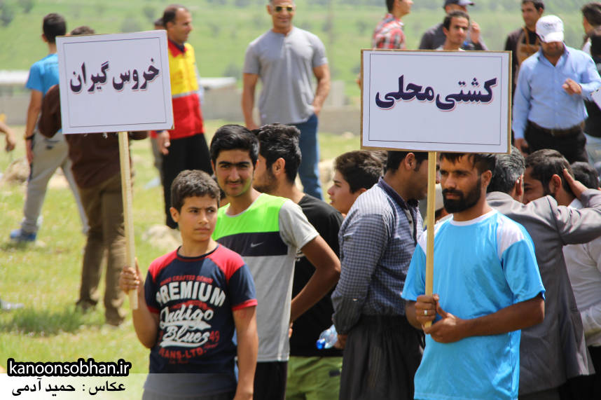 تصاویر جشنواره بازي هاي بومي و محلي کوهدشت (11)