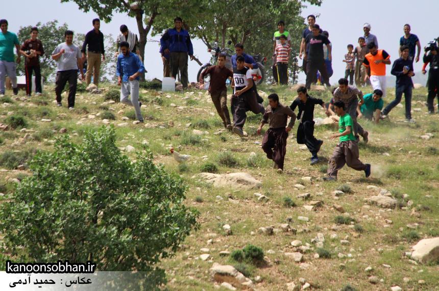 تصاویر جشنواره بازي هاي بومي و محلي کوهدشت (19)