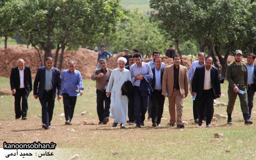 تصاویر جشنواره بازي هاي بومي و محلي کوهدشت (31)