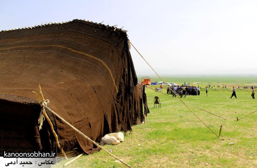تصاویر جشنواره بازي هاي بومي و محلي کوهدشت (38)