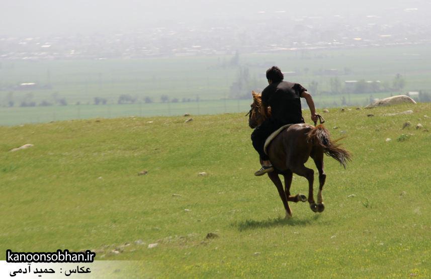تصاویر جشنواره بازي هاي بومي و محلي کوهدشت (47)