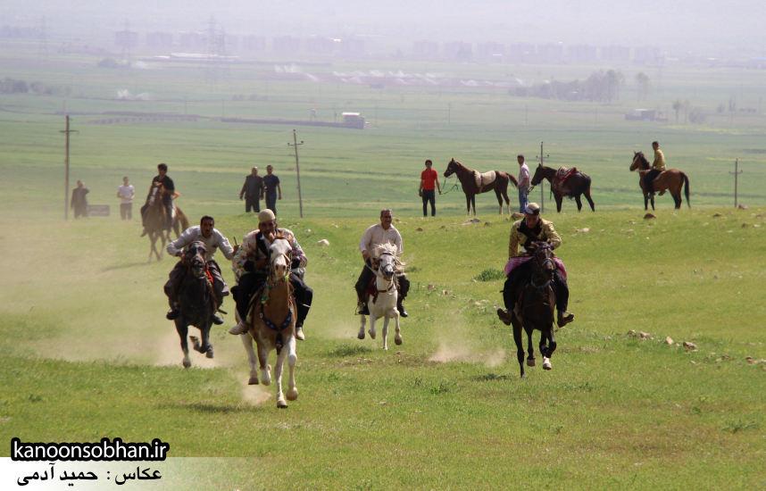 تصاویر جشنواره بازي هاي بومي و محلي کوهدشت (48)