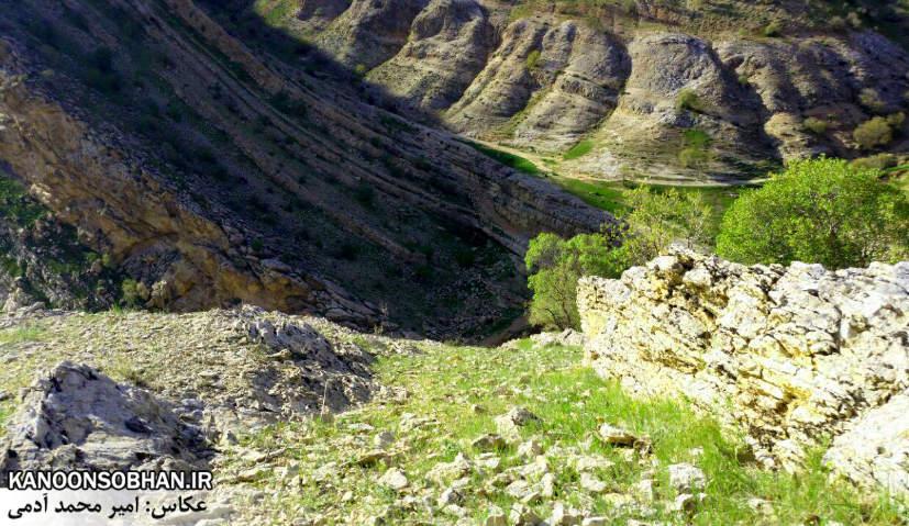 تصاویر طبیعت بهاری 95 تن قلای کوهدشت (1)
