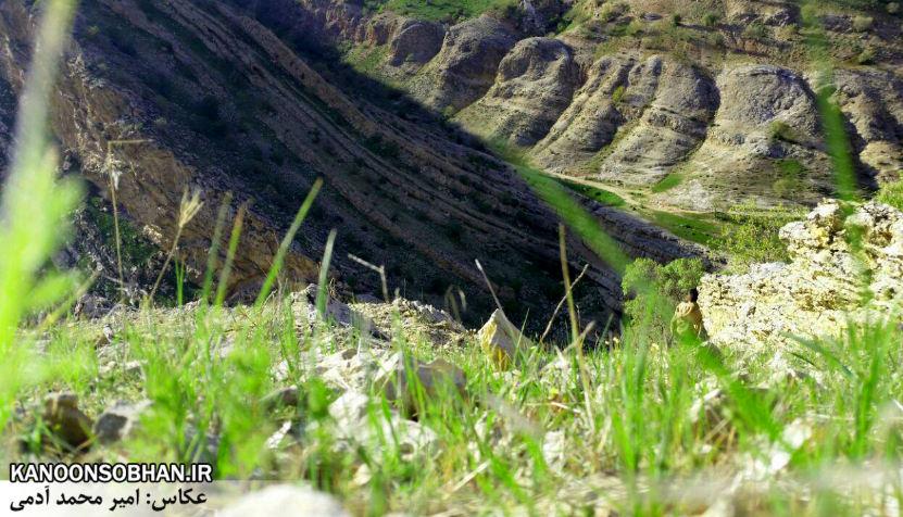 تصاویر طبیعت بهاری 95 تن قلای کوهدشت (4)