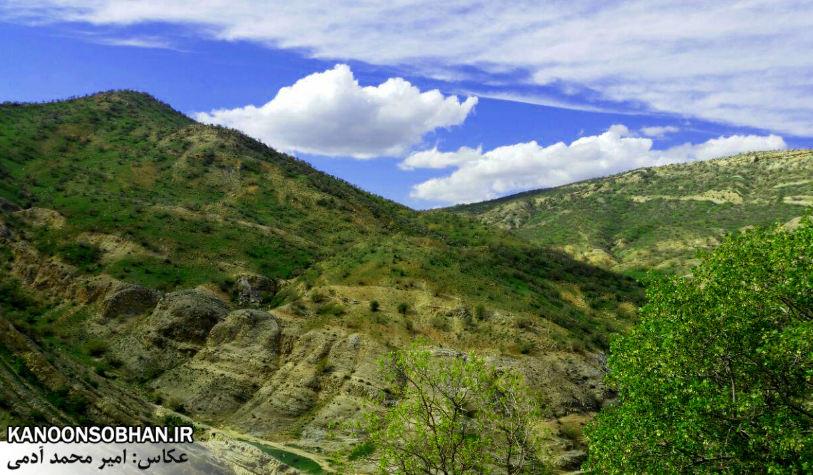 تصاویر طبیعت بهاری 95 تن قلای کوهدشت (6)