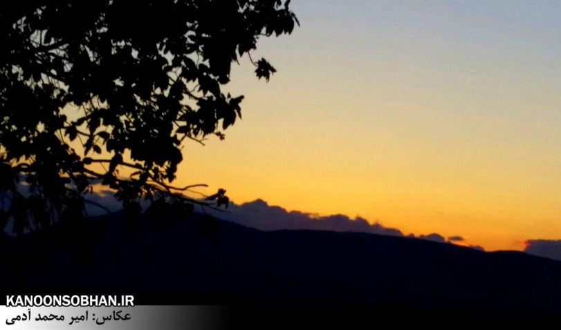 تصاویر طبیعت بهاری 95 تن قلای کوهدشت (9)