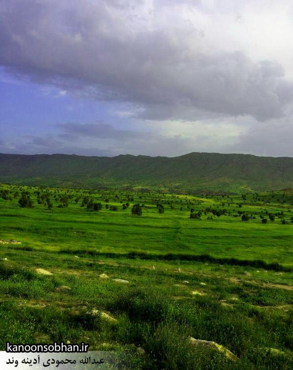 گزارش تصویری از«اولاد قباد» تا «تنگه شیرز» کوهدشت (13)