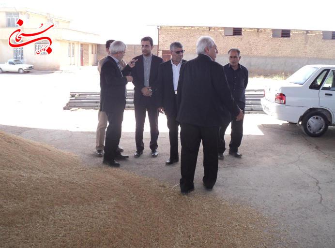 تصاویر بازدید فرماندار کوهدشت از مراکز خرید گندم و جو (4)