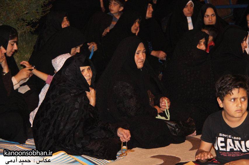 تصاویر جشن میلاد امام حسن مجتبی(علیه السلام) در پارک مهرگان کوهدشت (8)