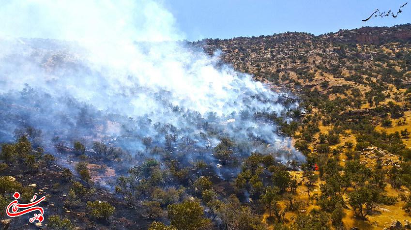 مهار آتش سوزی کوهدشت