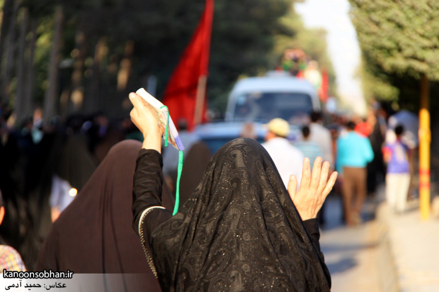 تصاویر استقبال از کاروان خدام و پرچم حرم امام رضا(ع) در کوهدشت (19)