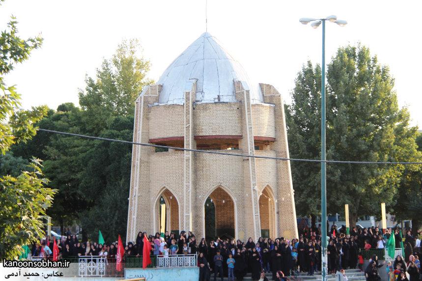 تصاویر استقبال از کاروان خدام و پرچم حرم امام رضا(ع) در کوهدشت (31)