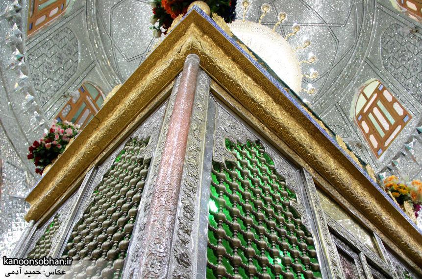 تصاویر بزرگداشت امام زاده محمد(ع) کوهدشت در مرداد 95 (41)