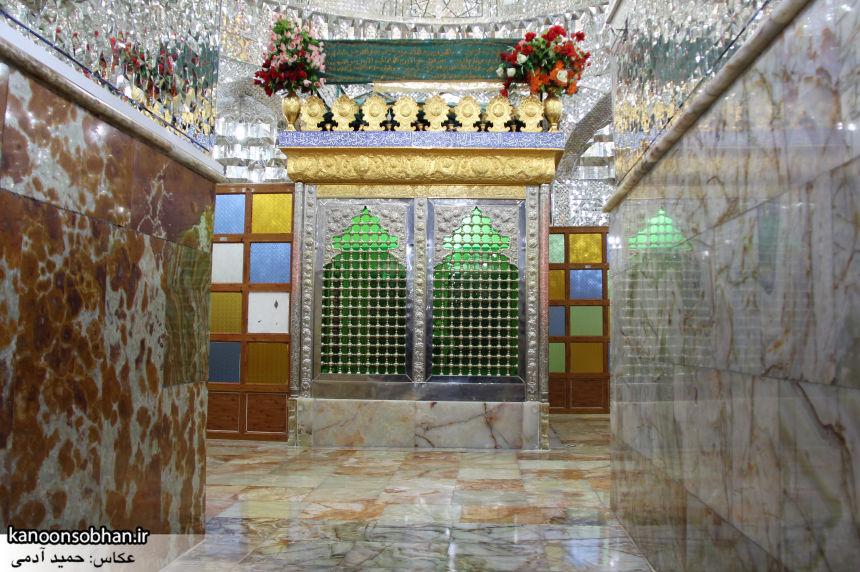 تصاویر بزرگداشت امام زاده محمد(ع) کوهدشت در مرداد 95 (48)