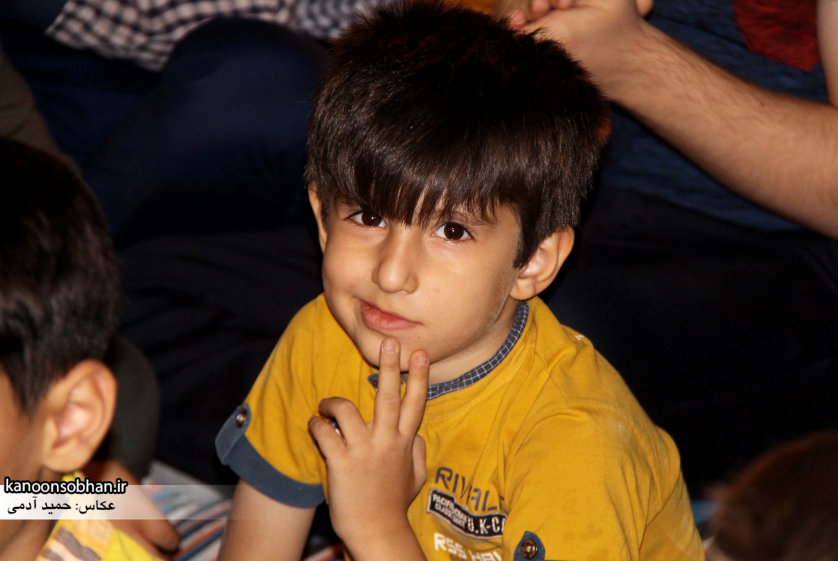 تصاویر جشن میلاد امام رضا (علیه السلام) در پارک کشاورز کوهدشت (10)
