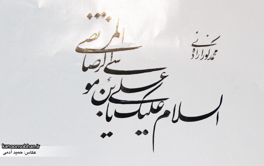 تصاویر جشن میلاد امام رضا (علیه السلام) در پارک کشاورز کوهدشت (27)