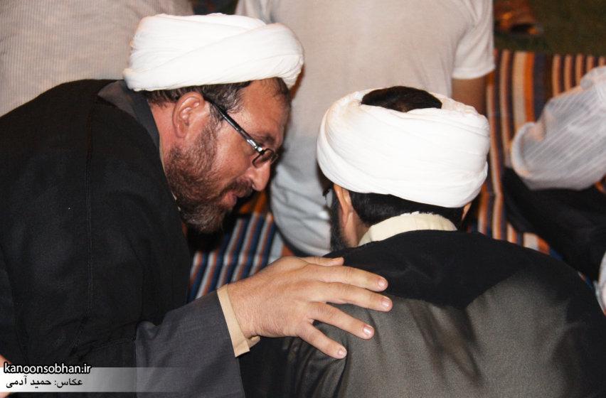 تصاویر جشن میلاد امام رضا (علیه السلام) در پارک کشاورز کوهدشت (7)